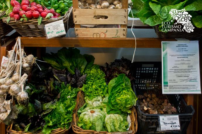 """Il reparto di verdura fresca della bottega """"Madre Natura"""" (ph Gianfranco Adduci)"""