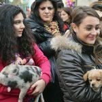 Tutti pronti per la benedizione degli animali protetti da Sant'Antonio (ph Martina D'Amodio)