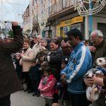 La benedizione degli animali domestici per la festa di Sant'Antonio, a Cicciano (ph Daniele D'Ari)