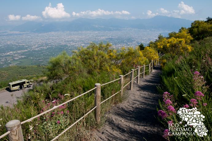 Risalita del cratere del Vesuvio dalla Strada Matrone (ph Gianfranco Adduci)