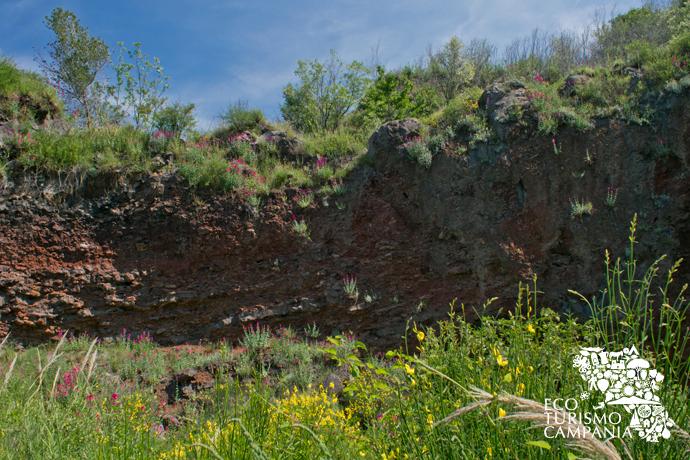 Esempio di stratigrafia dei Conetti vulcanici di Pollena (ph Gianfranco Adduci)