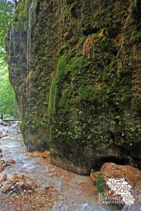 """L'alta parete della """"Grotta del muschio"""", meta intermedia dell'itinerario naturalistico dell'Oasi WWF Valle della Caccia, a Senerchia (ph Gianfranco Adduci)"""