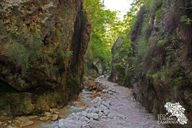 """La parete rocciosa su cui si è formata la """"Grotta del muschio"""", nell'Oasi WWF Valle della Caccia di Senerchia, provincia di Avellino (ph Gianfranco Adduci)"""