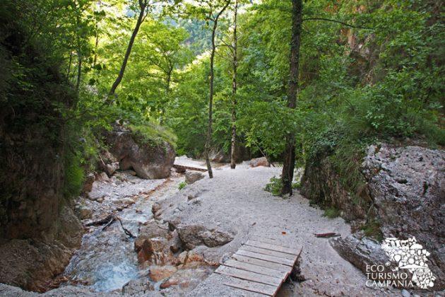Ponticelli in legno e facili sentieri di sabbia bianca per visitare l'Oasi WWF Valle della Caccia a Senerchia (ph Gianfranco Adduci)