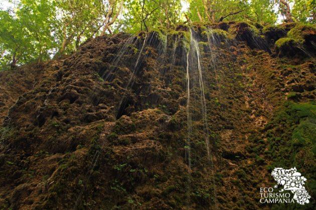 Rivoli d'acqua scorrono dalle alte rocce dell'Oasi WWF di Senerchia, nella Valle della Caccia (ph Gianfranco Adduci)