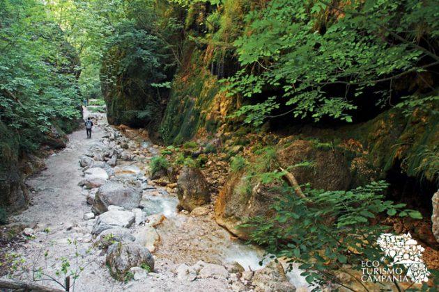 L'Oasi WWF Valle della Caccia a Senerchia è il luogo ideale per trekking ed escursioni naturalistiche adatte a tutta la famiglia (ph Gianfranco Adduci)