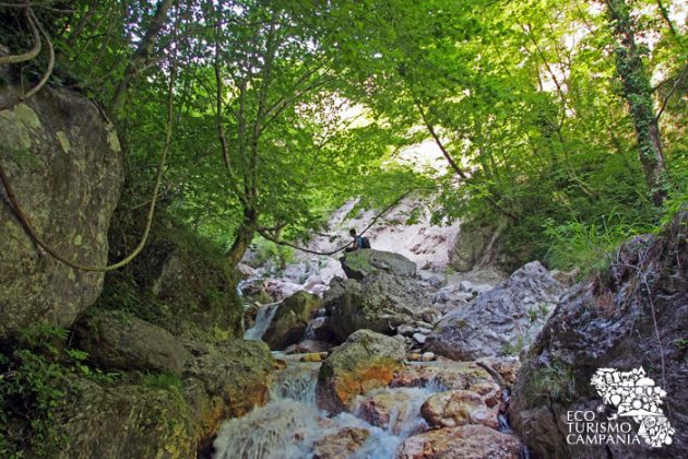 L'Oasi WWF Valle della Caccia è un luogo perfetto per meditare e ritrovare il contatto con la natura (ph Gianfranco Adduci)