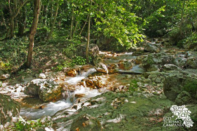 """Giochi di luce sulle acque del torrente Acquabianca, all'interno dell'Oasi WWF di Senerchia, località """"Valle della caccia"""" (ph Gianfranco Adduci)"""
