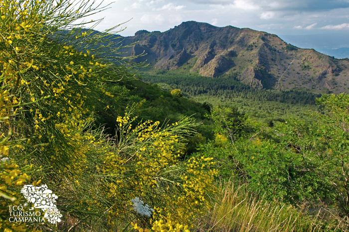 I cognoli del Monte Somma e la Valle dell'Inferno sul Vesuvio (ph Gianfranco Adduci)
