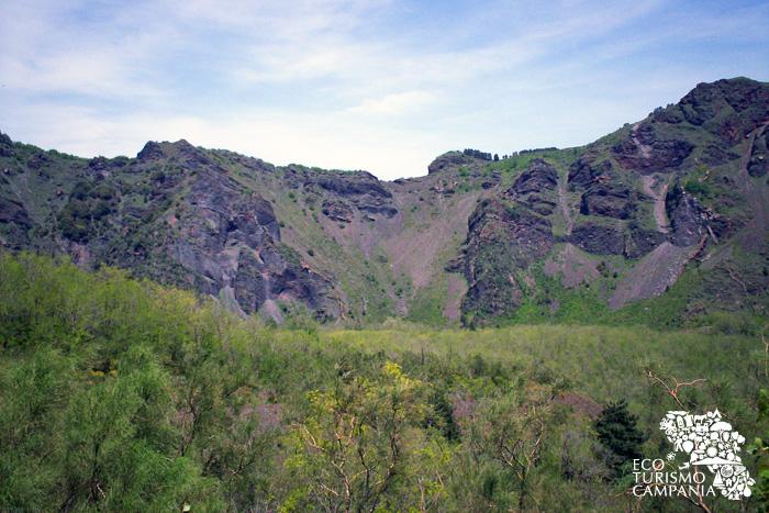 La cresta del Monte Somma con le colate laviche (ph Umberto Saetta)