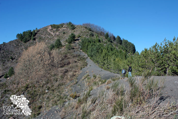 Escrusione sulla dorsale del Monte Somma (ph Umberto Saetta)