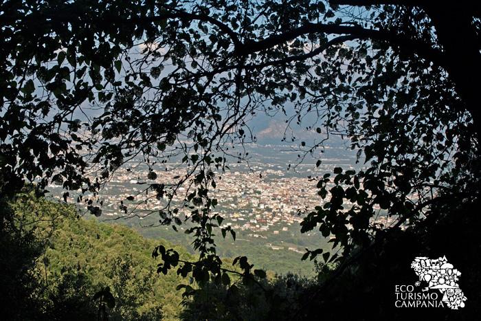 Uno scorcio della piana campana tra i boschi del Monte Somma (ph Gianfranco Adduci)
