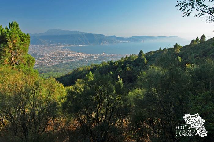 Panorama della penisola sorrentina dal Monte Somma - Vesuvio (ph Gianfranco Adduci)