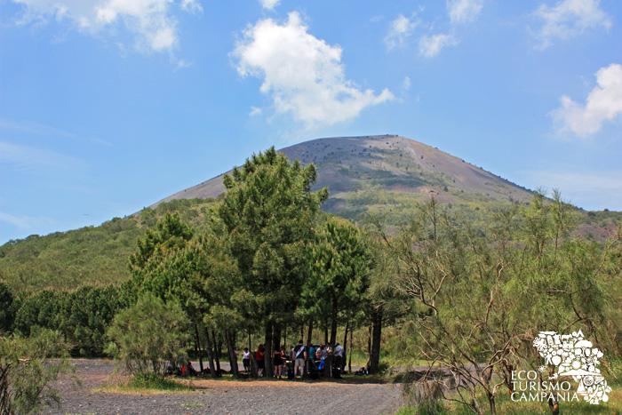 Il cono del Vesuvio visto da una radura del Monte Somma (ph Gianfranco Adduci)