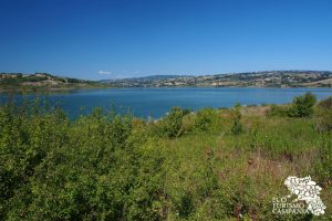 oasi wwf lago campolattaro (ph Gianfranco Adduci)