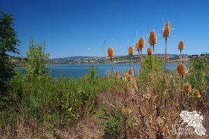 Panorama dall'Oasi WWF Lago di Campolattaro (ph Gianfranco Adduci)