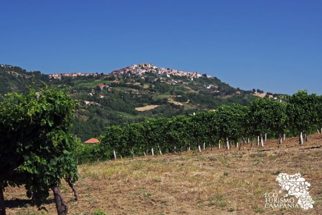 Panorama di Montefusco da Santa Paolina (ph Gianfranco Adduci)