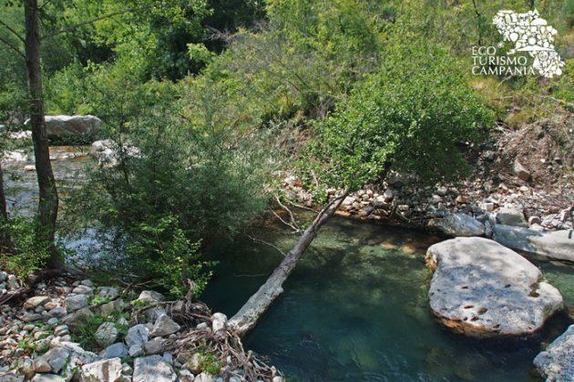 Sulla riva del fiume Sammaro (ph Gianfranco Adduci)