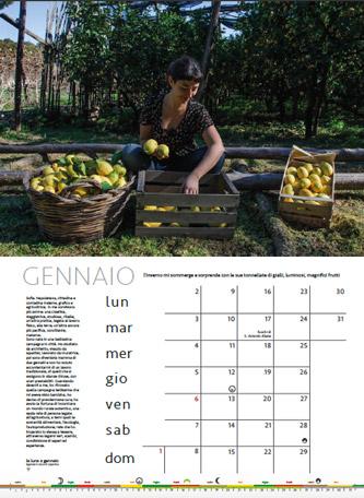 """Gennaio nel calendario """"Donne di Terra"""" 2017"""
