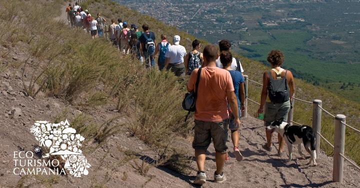 Escursioni e visite guidate in Campania