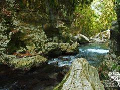 L'Oasi di Morigerati, Oasi WWF Grotte del Bussento (ph Gianfranco Adduci)
