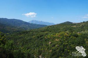 Panorama dall'Oasi di Morigerati (ph Gianfranco Adduci)