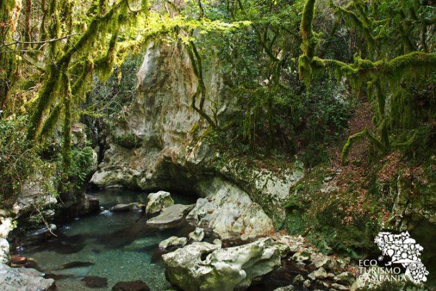 La stazione del muschio all'uscita delle grotte del Bussento (stazione muschio oasi wwf morigerati (ph Gianfranco Adduci)