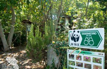 Giornata delle oasi WWF in Campania