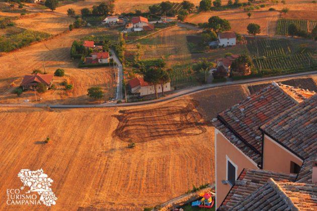 Coltivazioni a Caggiano (ph Gianfranco Adduci)