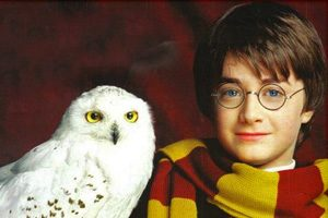 harry potter animali magici