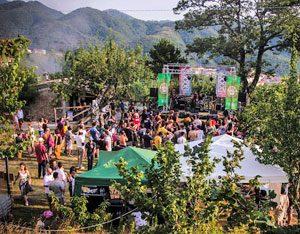 Concerti di Foodstock a Calvanico