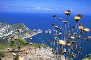 Panorama di Capri dal Monte Solaro