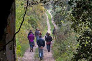 Passeggiata nell'oasi WWF di San Silvestro