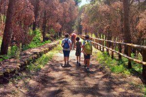 Passeggiata nella Riserva Alto Tirone sul Vesuvio