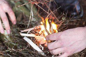 arte delle sopravvivenza nei boschi