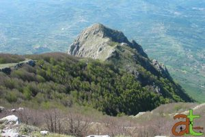 Panorama degli Alburni, Colle Medoro