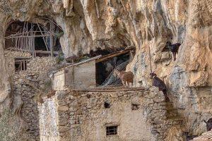 Ovile nelle grotte rupestri sul Sentiero degli Dei
