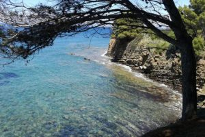 Il mare cristallino di Punta Licosa