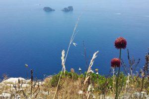 Panorama sugli isolotti Li Galli dal Sentiero delle Sirenuse