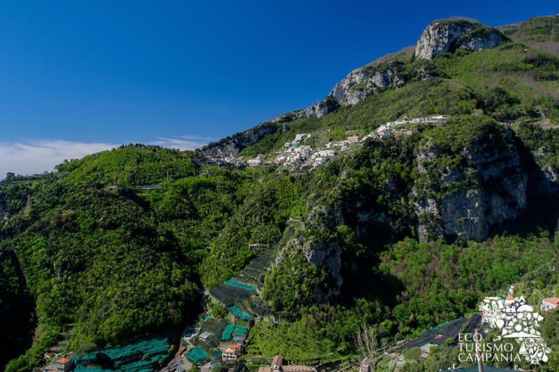 Panorama di Pogerola, villaggio di Amalfi, con i suoi terrazzamenti (ph Gianfranco Adduci)