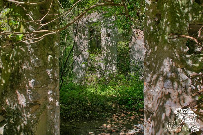 Ruderi di un antico Mulino ad Amalfi (ph Gianfranco Adduci)