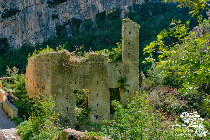 Rudere di un mulino cartiera nel vallone di Amalfi (ph Gianfranco Adduci)