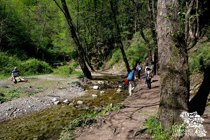 Trekking lungo il torrente Canneto nel Vallone delle Ferriere (ph Gianfranco Adduci)