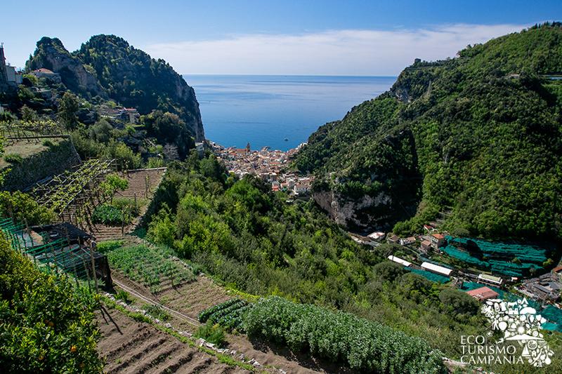 Il Vallone dei Mulini ed Amalfi dai terrazzamenti di Scala (ph Gianfranco Adduci)
