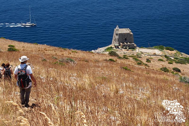 Punta Campanella, torre di avvistamento (ph Gianfranco Adduci)